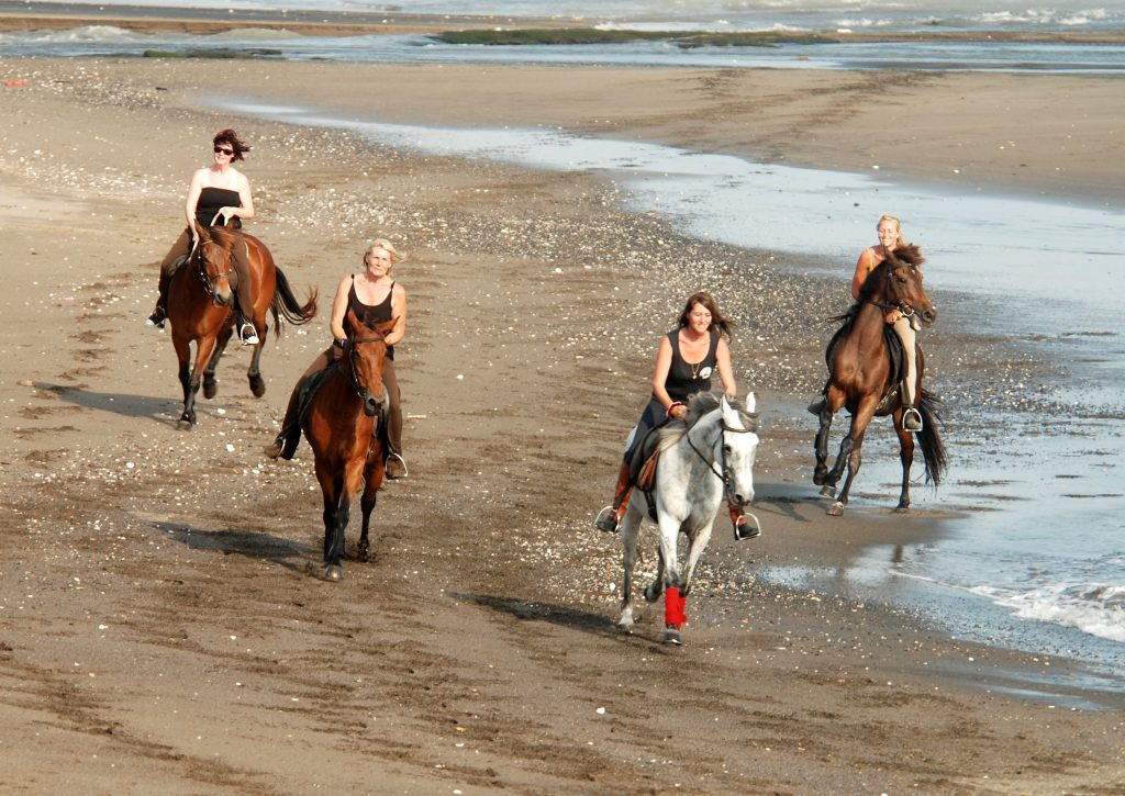 Canggu Horse Riding via Bali Hello Travel